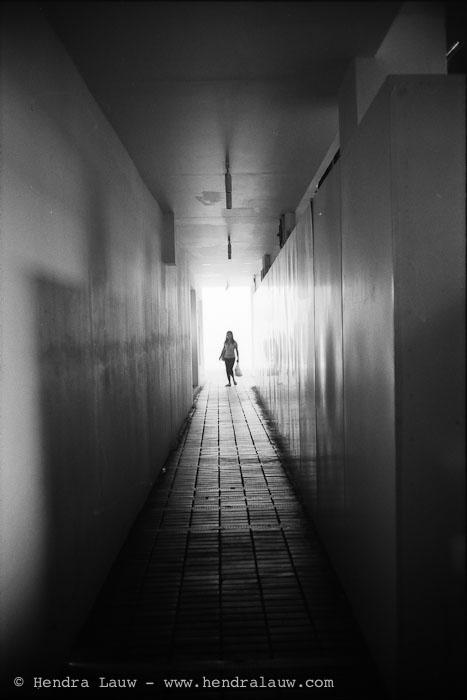 Shadows and Highlights